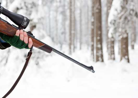 The Best Hunting Rifle on the Market - Hunting in the USA