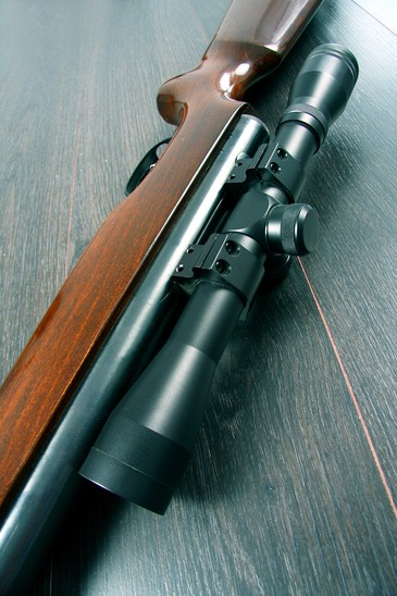 Scope mounted on a rifle