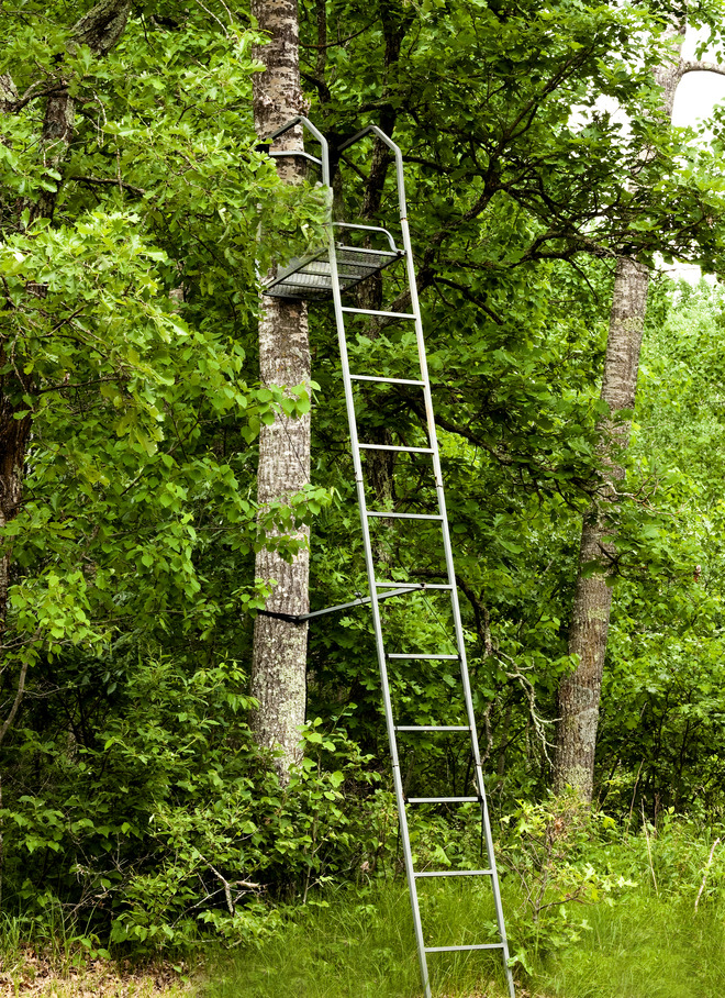 Top Tree Stand Reviews